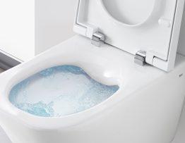 rimless toilet
